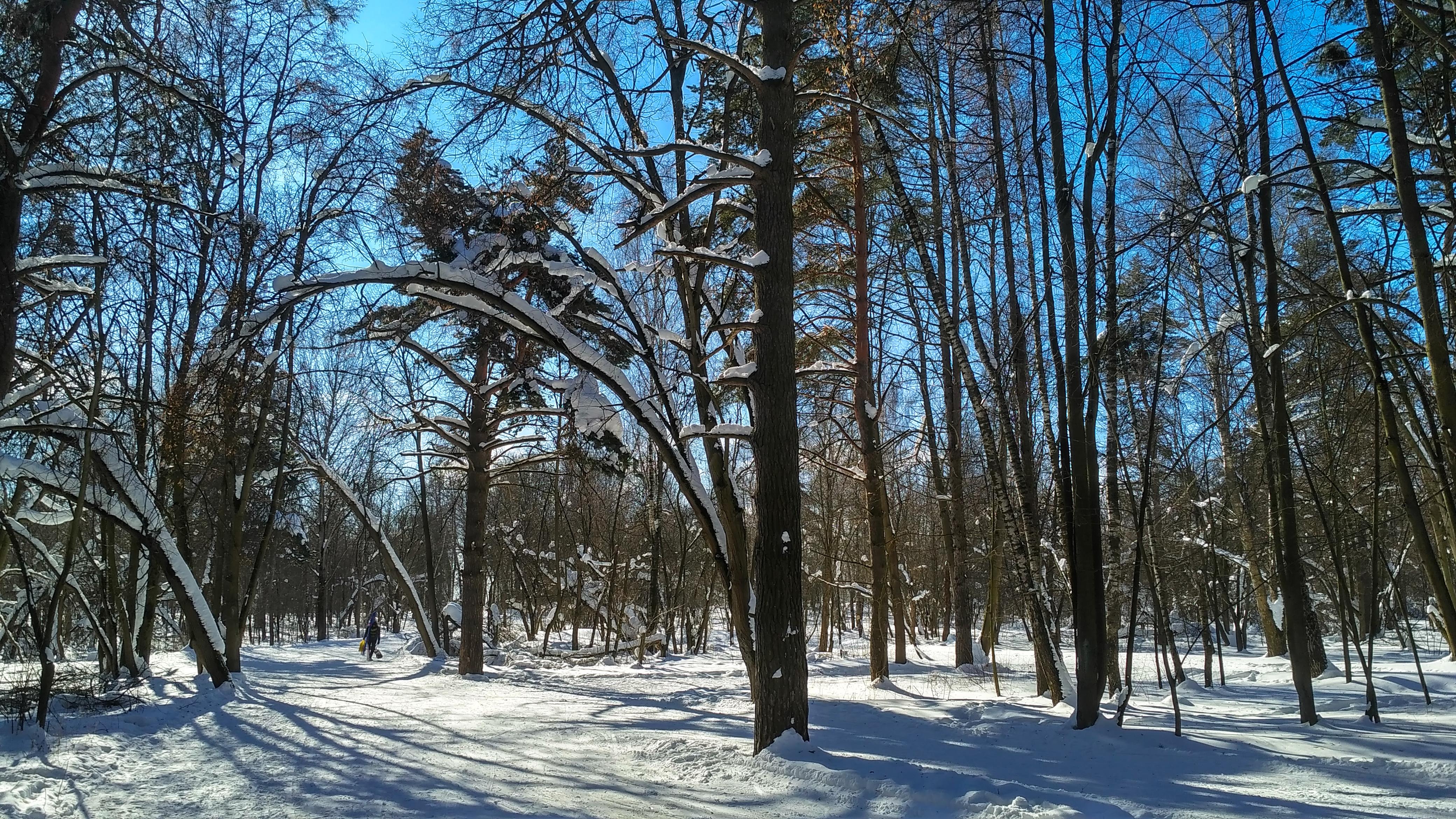 Лыжная трасса Волкуша 8 марта 2018 года