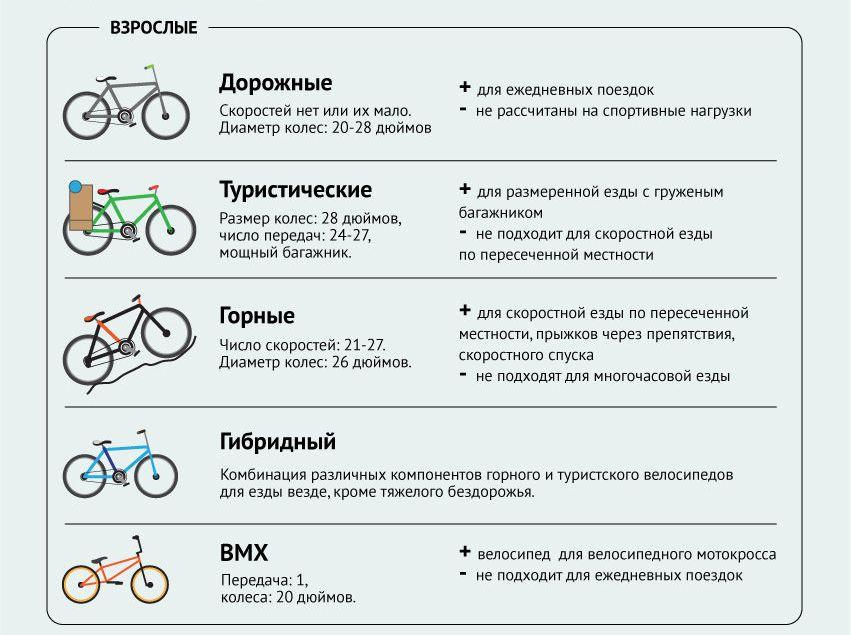 виды велосипедов для взрослых