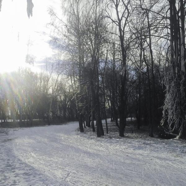 17 ноября 2018. На Волкуше уже можно кататься на лыжах!