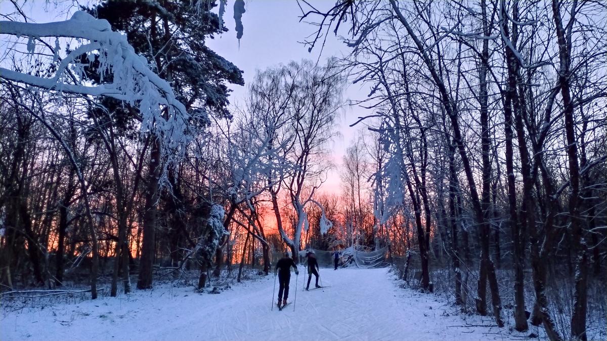 лыжная трасса Волкуша